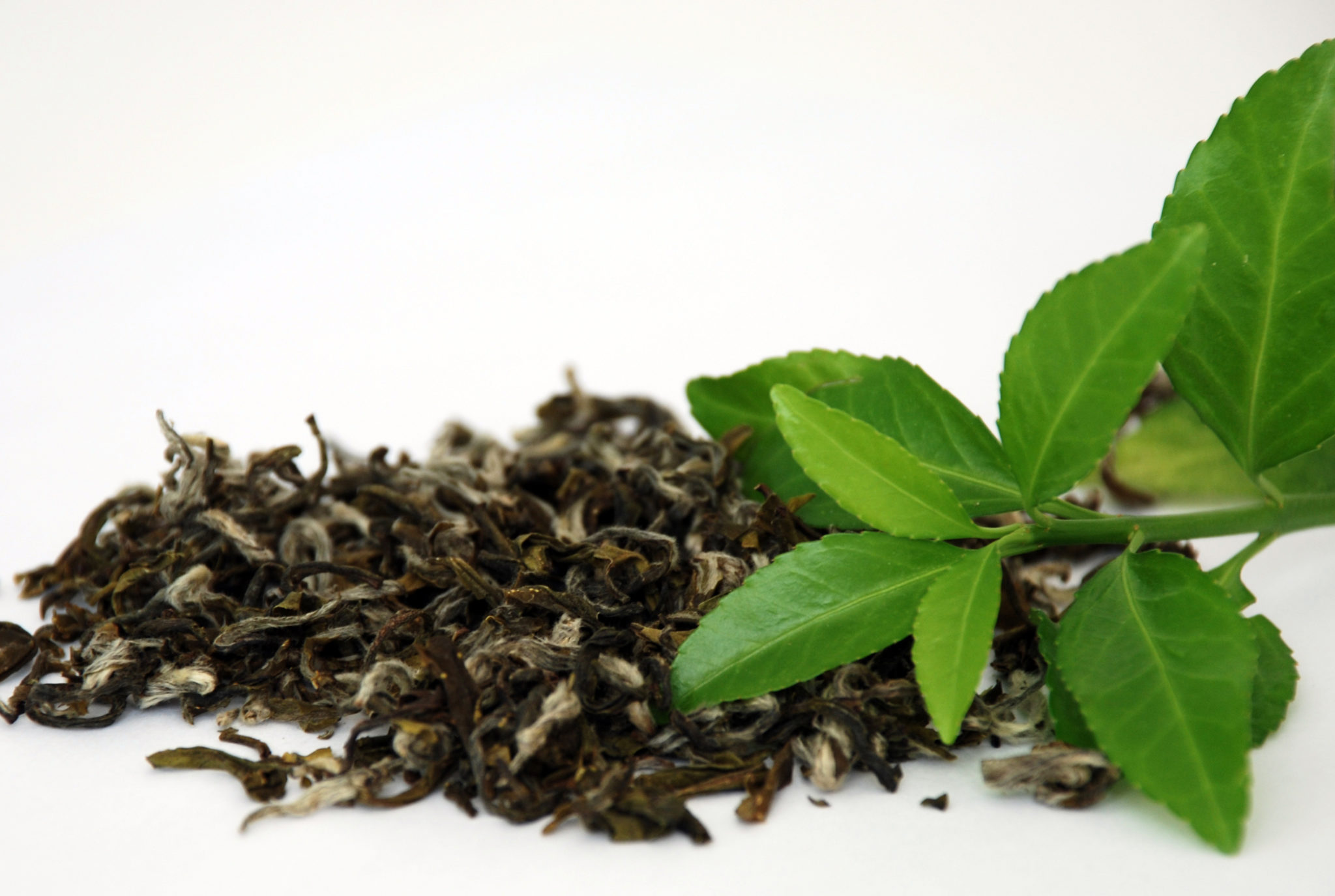 What Are The Health Benefits of Green Tea? - Healthy ...